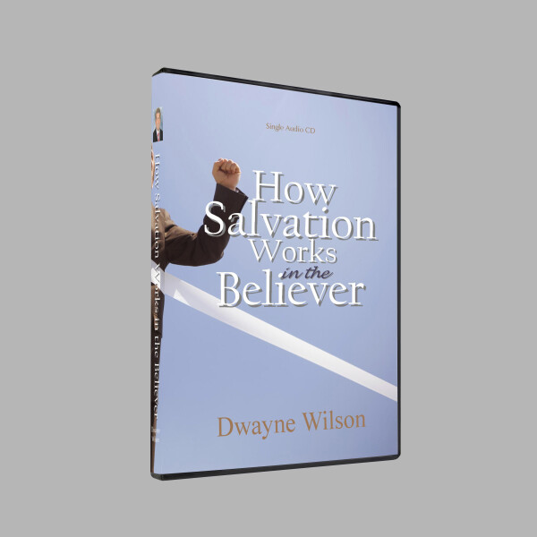 Series: How Salvation Works in the Believer